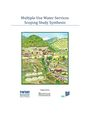 Multiple use water services: scoping study synthesis. Final report [MUS project] (12/12/2012)