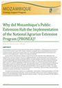 Why did Mozambique's public extension halt the implementation of the National Agrarian Extension Program (PRONEA)? (1/30/2014)