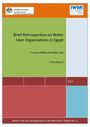 Brief retrospective on water user organizations in Egypt. Final Report (11/1/2017)