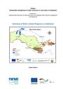 Overview of water-related programs in Uzbekistan. [Project report of the Sustainable Management of Water Resources in Rural Areas in Uzbekistan. Component 1: National policy framework for water governance and integrated water resources management and supply part] (11/17/2017)