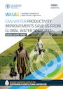 Can water productivity improvements save us from global water scarcity?. White paper (7/31/2021)