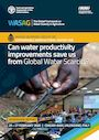 Can water productivity improvements save us from global water scarcity?. Report of the workshop organized by the WASAG (Global Framework on Water Scarcity in Agriculture) Working Group on Sustainable Agricultural Water Use, Valenzano, Italy, 25-27 February 2020 (7/31/2021)