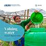 IWMI Annual report 2020 (2021-10-04)